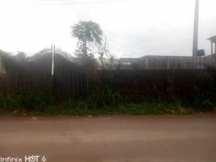 100ft by 100ft parcel of land for sale 20million
